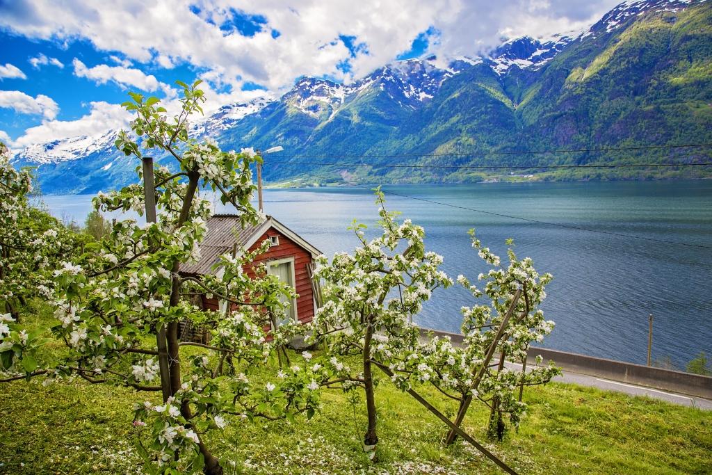 Noruega Sato 3